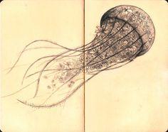 more jellyfish via fuckyeahbookarts