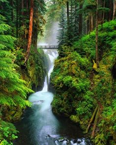 Sol Duc Falls, Olympic National Park, Washington. Can't wait to see this place in person!