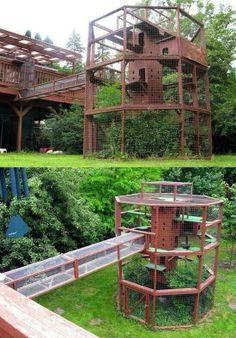 Cat tower. Outdoor enclosures. Safe kitties. Big kitties.