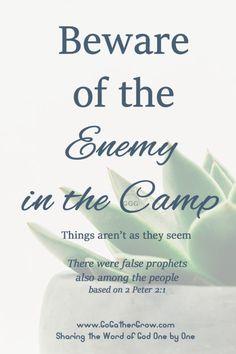 False Teachers | Enemy in the Camp