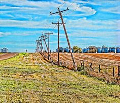 Powerlines in South Dakota  Photograph