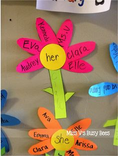 Miss V's Busy Bees: Pronoun Flowers - A Pronoun Activity