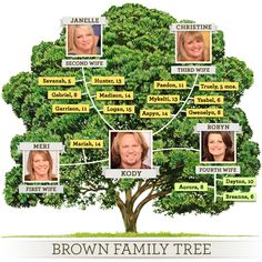 One of the more unusual family trees