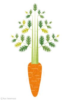 carrot // illustration Ryo Takemasa