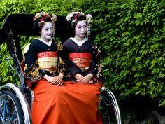 Colorful modern Maikos and Geishas
