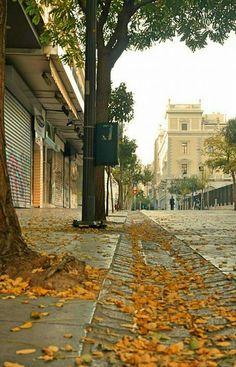 Aeolou street in autumn, Athens, Greece