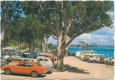Noosa National park ..carpark cica 1970