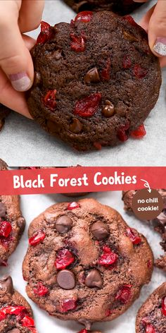 These black forest cookies are chocolate-y, chewy & soft and loaded with maraschino cherries and chocolate chips. Chocolate cherry cookies are easy to make, only 20 minutes from start to finish. Plus no chilling of the dough is needed! Chocolate Chip Cookies, Chocolate Chips, Chocolate Pastry, Chocolate Cherry Cupcakes, Chocolate Peppermint Cookies, Marshmallow Cookies, Cocoa Cookies, Mini Cookies, Chocolate Cookie Recipes