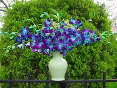 Orquídeas azuis http://photos.weddingbycolor-nocookie.com/p000012133-m65971-p-photo-189604/Blue-and-Purple-Orchids.jpg