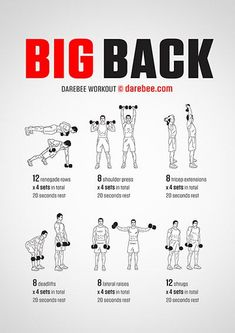 Big Back workout poster – Fitness&Health&Gym For Women Big Back Workout, Chest And Back Workout, Dumbbell Back Workout, Back Workout At Home, Shoulder Workout For Men, Lat Workout, Big Biceps Workout, Arm Day Workout, Woman Workout