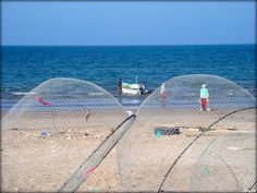 Fishermen in Sohar - Oman ....{by Bassam}