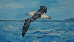 Albatross Black Browed flying over the waves painting original art for sale including delivery Animal Art, Painting Edges, Wave Painting, Art, Animal Paintings, Canvas Art, Seascape Paintings, Top Paintings, Bird Canvas