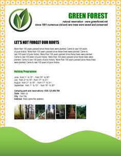 GREEN-FOREST-natural-reservation-flyer