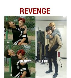 Lol no Joke my brother did that to me and thats probably the same face I made Ch - Koala Funny - Lol no Joke my brother did that to me and thats probably the same face I made Ch Koala Funny Funny Koala meme Koala Meme, Funny Koala, Funny Animals, K Pop, Monsta X, Kookie Bts, Jhope, Bts Memes Hilarious, Funny Humor