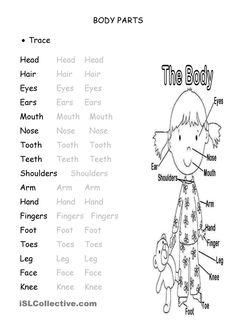 body parts worksheets for kindergarten pdf