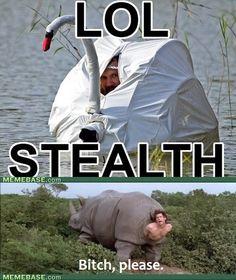 Stealth Level Ventura