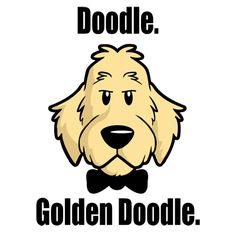 """""""Doodle. Golden Doodle."""" LOL. This gem is from:  http://www.mydogrulez.com. This was repinned to The Goldendoodle Pack, a board just for unique gifts and finds for goldendoodle lovers. Tshirts starting at $14.99. Curated by packdog.co, launching this holiday season 2012. If you love a dog, you'll love it. ;)"""