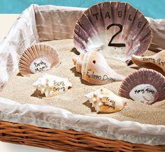 Seashell escort cards