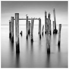 Still.                 Photo by Lance Ramoth