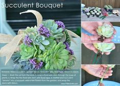 How to make a beautiful arrangement from succulents.