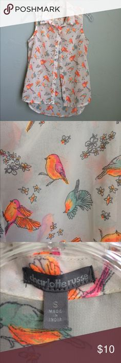 Charlotte Russe summer top Orange and blue birds. So cute and cool for summer. No trades. Charlotte Russe Tops Blouses