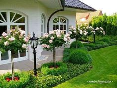 Beautiful side yard landscaping and garden border design