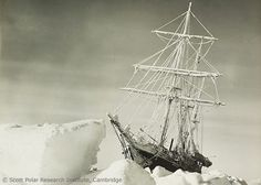 Shackleton's ship the Endurance became stuck in an ice floe during an ill-fated expedition to Antarctica