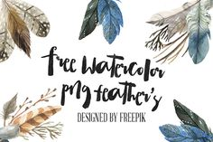 DLOLLEYS HELP: Free Watercolor PNG Feathers