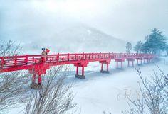 HAPPYSHOOT  Location Photo  吹雪の中の撮影歓迎 http://happyshoot.jp/
