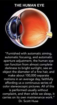 The incredible human eye - quote source: Dr. Scott Huse, The Collapse of Evolution, 2d ed. (Grand Rapids, MI: Baker Book House, 1993), 92.