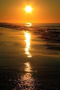 ...a drop of golden sun... | Flickr - Photo Sharing!