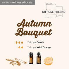 Herbst-Diffuser-Mischung