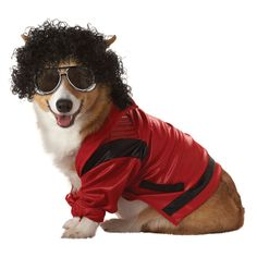 Thriller! Dress Your Dog As The King Of Pop This Halloween  ... from PetsLady.com ... The FUN site for Animal Lovers