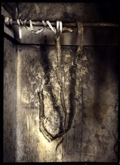 The Devil's Alphabet: S (2007) Lauren E. Simonutti  S is serpentine susurration. I can hear it through the skin.