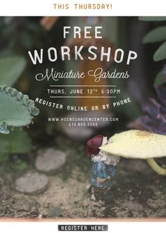 Join us for an evening of Miniature Gardening!
