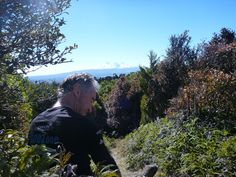 Neil taking in view of Mt Ruapehu on route to Zeke's Hut