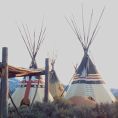 Teepees - a sustainable stayaction venue (if only the poles weren't so damn long and almost impossible to transport)!