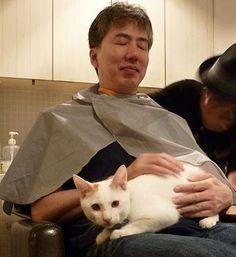 車のボンネットから救出された迷い猫 今は美容室のアイドルに