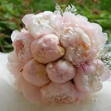Výsledek obrázku pro svatební kytice pivoňky