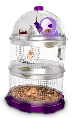 Dynamic apartment habitat for small pets. BioBubble for Hamsters!