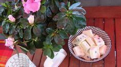 Köstliches Eis-Dessert für heiße Tage - fruchtig-sahnige Eispralinen.  Genau das richtige bei den aktuellen Temperaturen.  Zum Rezept: https://www.living-keto.de/rezepte/quark-eispralinen/