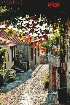 Molyvos, Lesbos / What's your favorite summer vacation spot? Click through to see more: http://vanessa-morgan.blogspot.be/2015/05/great-summer-reads-that-thrill-and-chill.html
