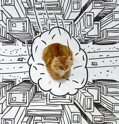 Here is the Doodle Cat, or when Internet is having fundefacinga simple cat photo by imagining funny situations with just a fewpen strokes! You can of cour