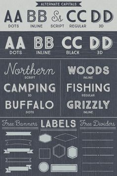 True North - Vintage Typefaces - alternates, styles, banners, labels, and typographic options.
