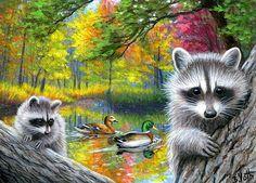 ACEO original raccoon autumn fall forest lake ducks landscape painting art  | eBay