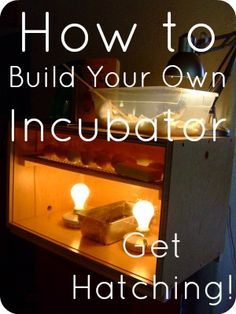 DIY Incubator Ideas: Build Your Own for Pennies | The 104 Homestead [104homestead.com]