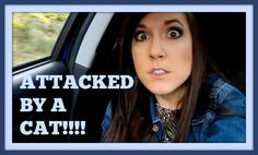 Attacked by a CAT!!!!  // Channel Elle