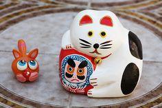 Italian or Japanese cat?