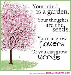 garden sayings   ... your-mind-is-a-garden-quote-picture-life-quotes-pics-sayings-image.png
