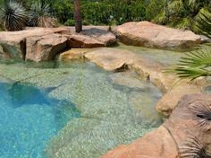 Back To Nature With Natural Swimming Pools : Waterworld Natural Swimming Pool Design LaurieFlower 016 by MyohoDane